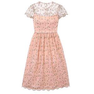 Gal Meets Glam Penelope Pink Scallop Hem Dress